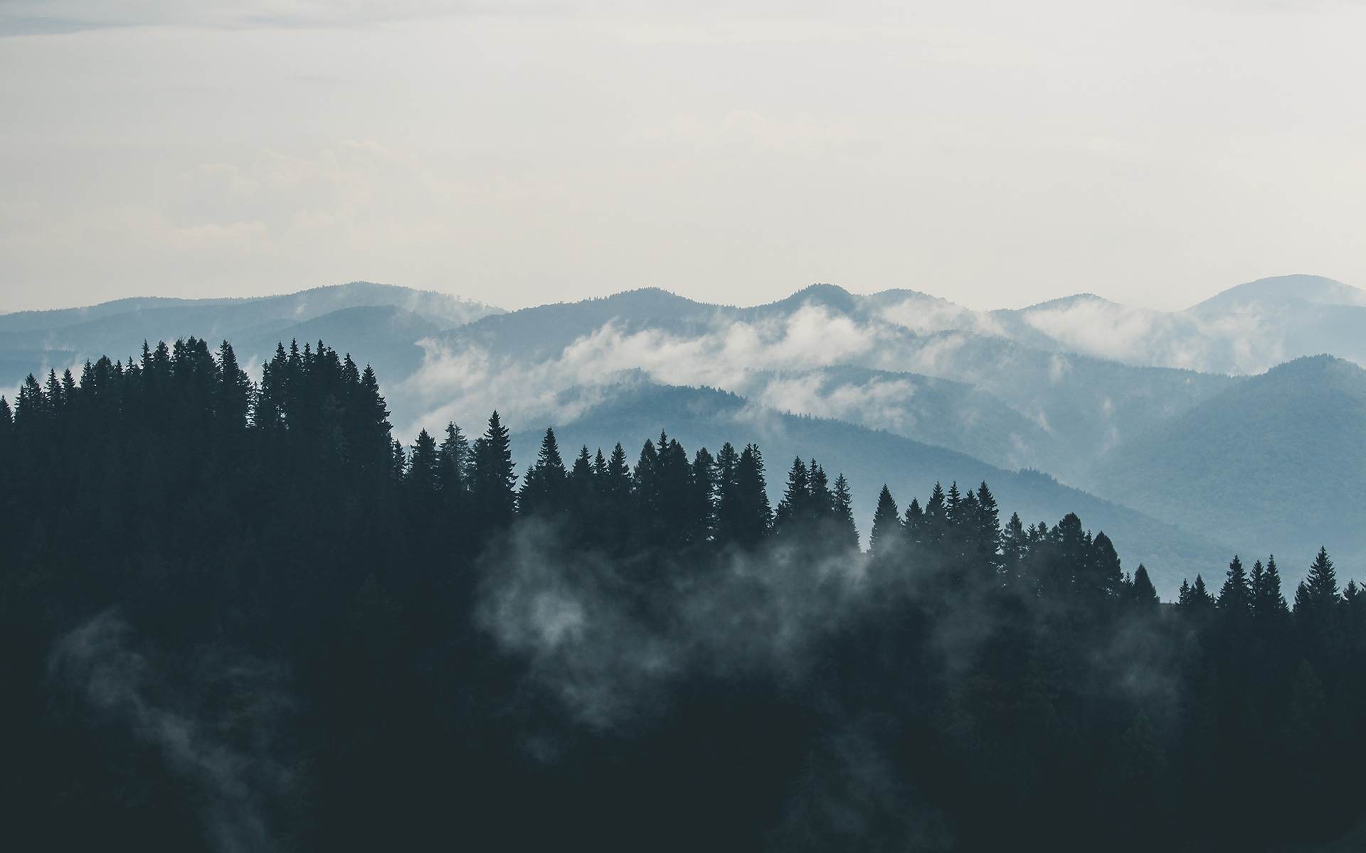 mountains-clouds-forest-fog